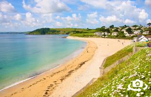 Gyllyngvase Beach Panorama - Falmouth Cornwall