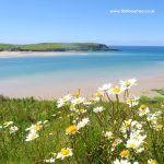 Daymer Bay beach near Padstow in North Cornwall. Padstow Beach