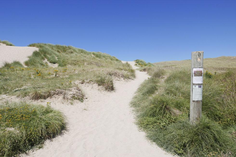holywell-bay-polly-joke-coastal-walk-cornwall_0002