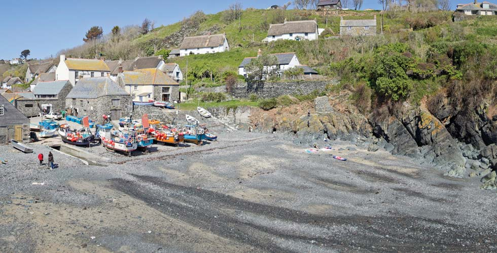 cadgwith-cove-dog-friendly-beach